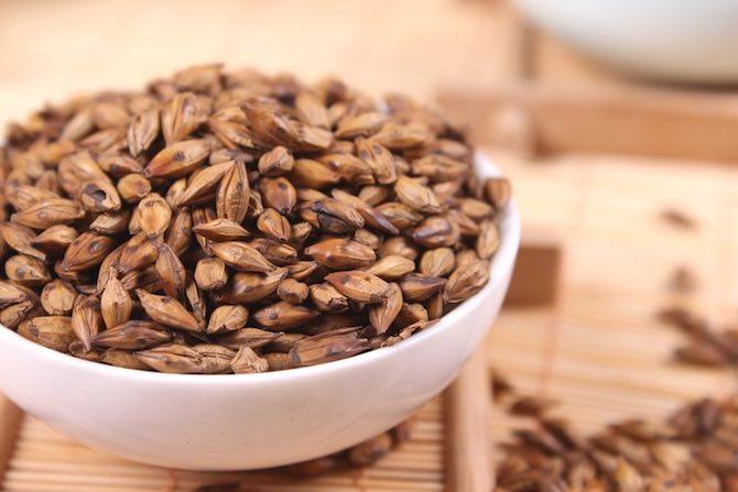 Ячменное зерно