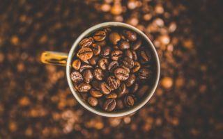 Какого рода слово «кофе» и как его правильно употреблять